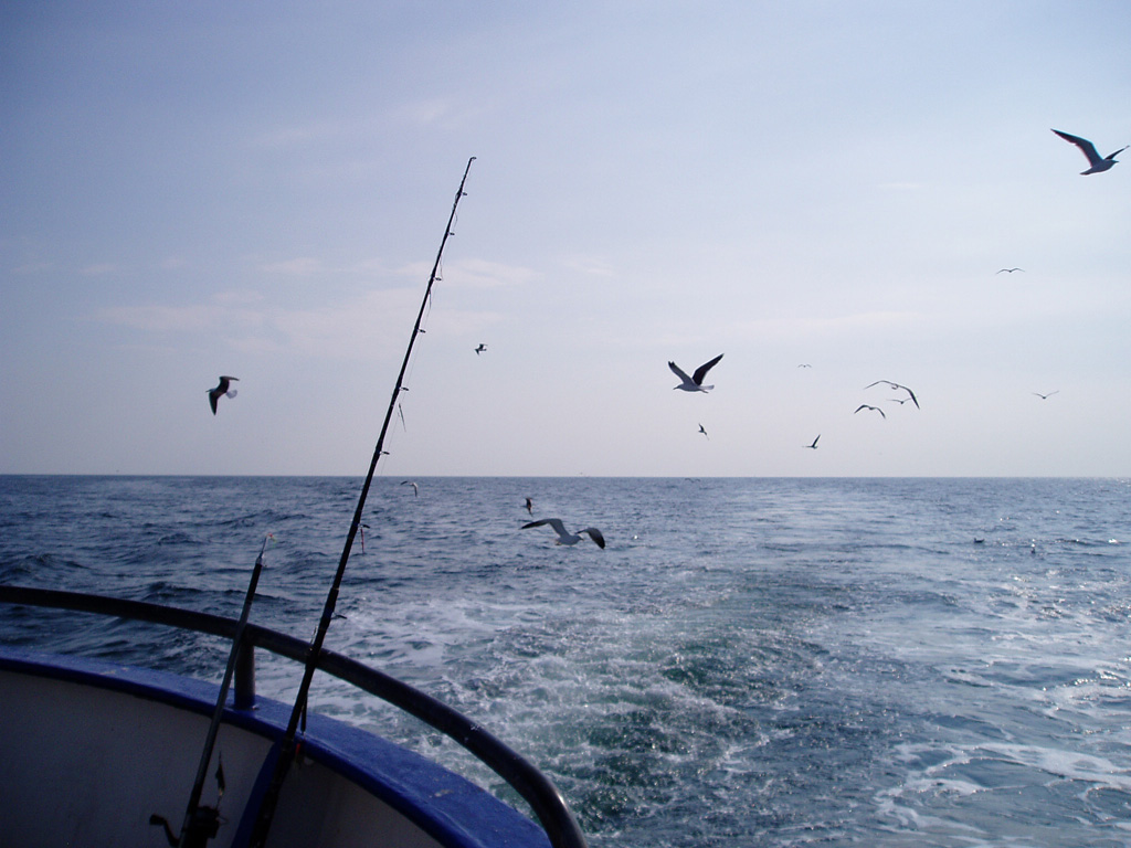 deep-sea-fishing